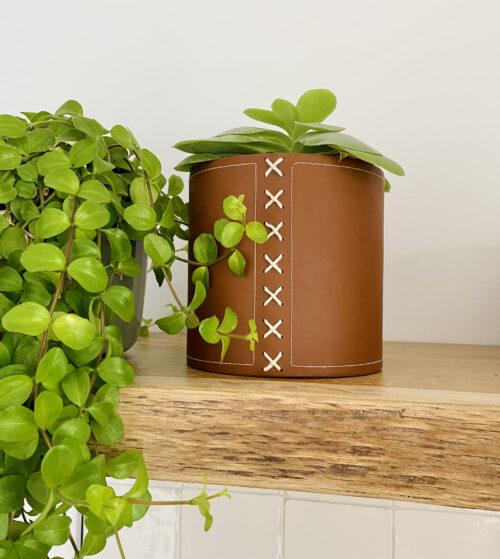 cognac kleurige bloempot met plant op houten plank