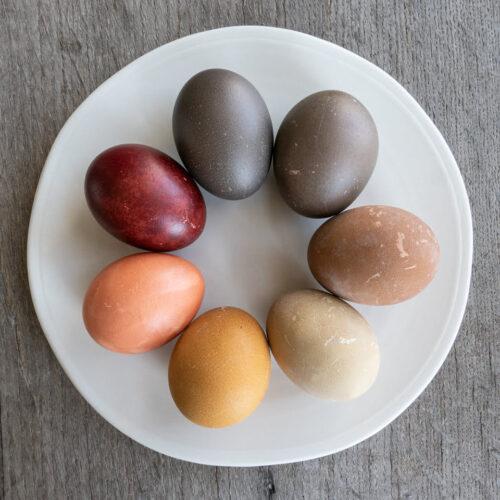 bord met gekleurde eieren