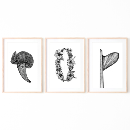 3 zwart wit illustraties in frame